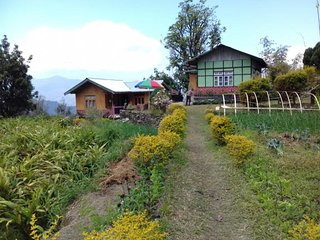 Awesome Homestay In Sikkim