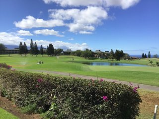 Waikoloa Fairways A101