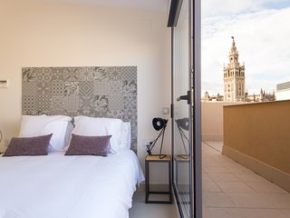 Duplex Apartment with private Terrace with views to the Cathedral and La Giralda