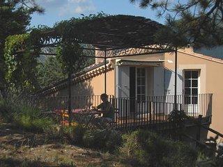 Une tonnelle de plain-pied,en plein sud à l'ombre des pins