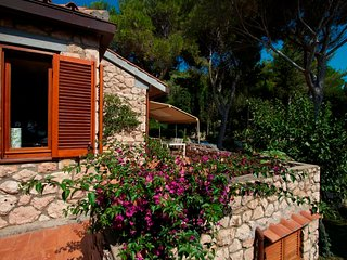 Lo Sbarcatello Villa Sleeps 12 - 5763049