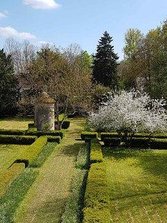 Pommier en fleurs au printemps.