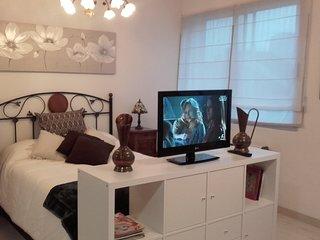 Beautiful studio in Lugo
