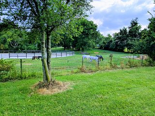 Private Home on 8 serene acres in Franklin
