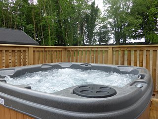 Squirrel Lodge 41 with Hot Tub, Newton Stewart