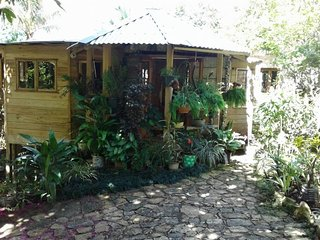 Mel's Botanical Retreat