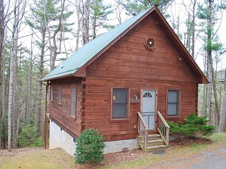 Watson Log Cabin-Cozy, Hiking Nearby, WIFI, Blue Ridge Parkway, Sightseeing