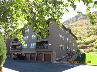 MT SOPRIS 2BD/2BA CONDO FOR EXTENDED STAY WHITEWATER RAFTING SKIING DOWNTOWN