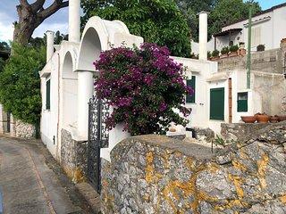 Capri/Villa typique/jardin/terrasse et vue sur mer