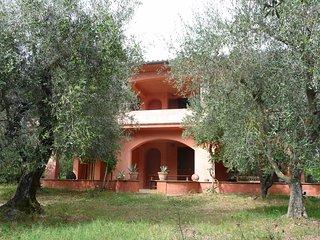 Bolsenasee Landhausidylle im Olivenhain