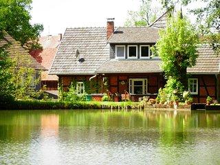 Ferienwohnung Alte Mühle - Natur Pur auf 5.000qm / Schwimmteich / Beachplatz