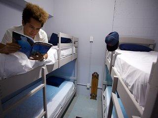 Auikyani Room 3 - Coatí