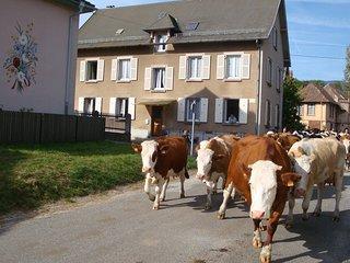 Vacances en Alsace pour 2 dans la Vallee d'Munster