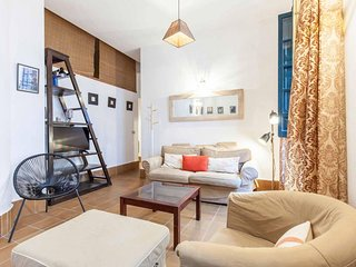 Viriato apartment in Casco Antiguo with WiFi, air conditioning & private terrace