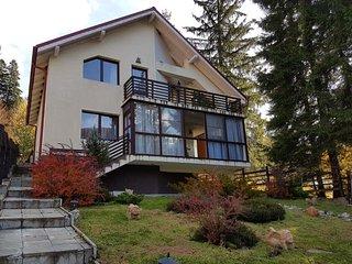 BearPeak Deluxe Villa