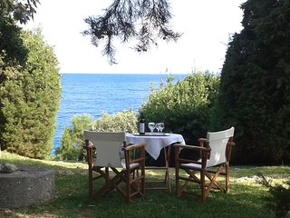 Villa Ilida,access to sea, balcony on the Ionian sea within an olivegrove