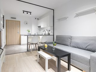 Modern apartment in a fancy district of Krakow