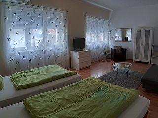 Gastehaus Conny 1, Heidelberger Ferienwohnung, 2 Zimmer Apartment, EG