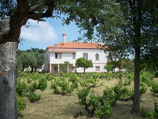Family Apartment with Vineyard and Valley Views in Serra São Mamede Natural Park