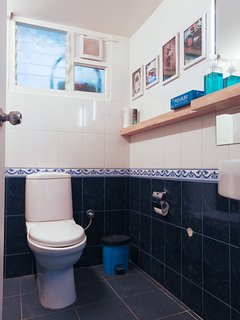 Ground Floor common bathroom