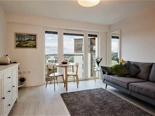 Modern, designer flat with stunning views across to the castle
