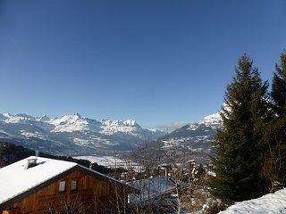 Grand Chalet 8p avec vue sur les montagnes + pres du centre