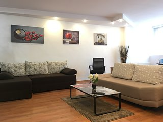 Large Apartment in Ultra-Central Location
