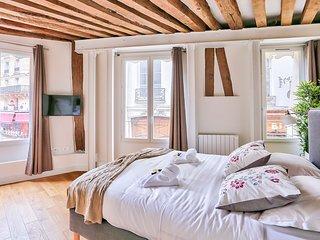 Notre Dame - typical Parisian flat (363)