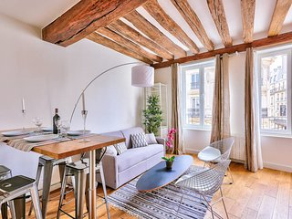 Extraordinary apartment in Notre Dame (366)