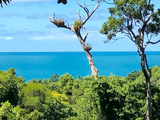 Daintree Magic Holiday House