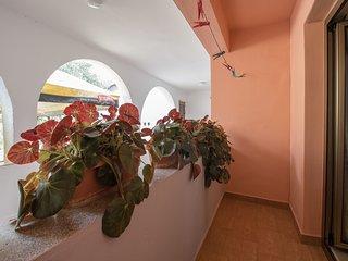 Apartments Željka (65511-A1)