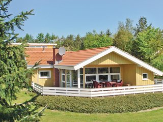 Amazing home in Hejls w/ Sauna, WiFi and 3 Bedrooms (C2034)