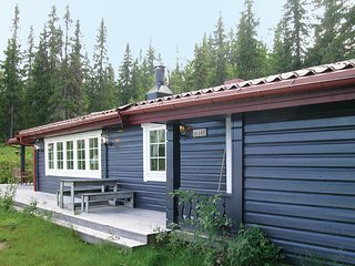 Amazing home in Trysil w/ Sauna, WiFi and 3 Bedrooms
