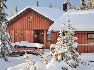 Stunning home in Sjusjøen w/ 3 Bedrooms