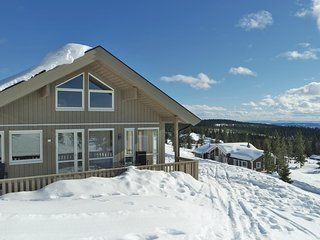 Amazing home in Sjusjøen w/ WiFi and 4 Bedrooms
