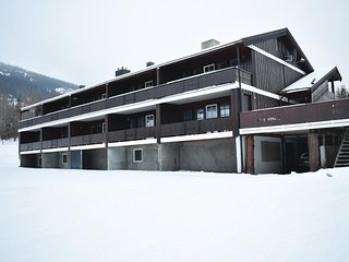 Beautiful apartment in Hemsedal w/ WiFi and 2 Bedrooms