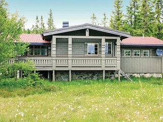 Stunning home in Nissedal w/ 3 Bedrooms