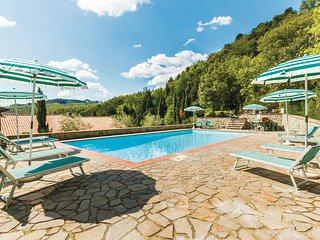 Stunning apartment in Gaiole in Chianti SI w/ 1 Bedrooms, Outdoor swimming pool