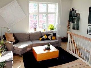 Lovely Copenhagen apartment near Triangle Square