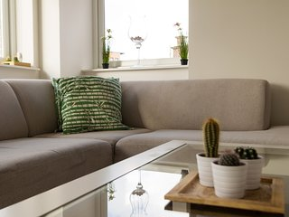 GOG Cozy Lofts Haarlem D