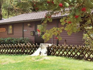 Ferienpark Waldsee,Kaminhaus