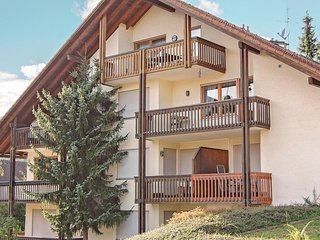 Beautiful home in Todtmoos w/ 2 Bedrooms
