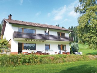 Stunning home in Lenzkirch-Saig w/ WiFi and 2 Bedrooms