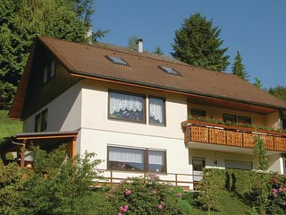 Amazing home in Bad Peterstal-Griesb. w/ WiFi and 2 Bedrooms