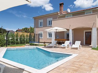 Beautiful home in Svetvincenat w/ WiFi and 3 Bedrooms (CIC919)