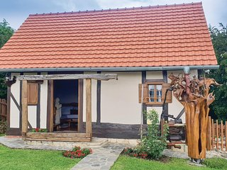 Amazing home in Donja Voca w/ WiFi and 1 Bedrooms