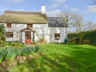 Damson Cottage, Lifton