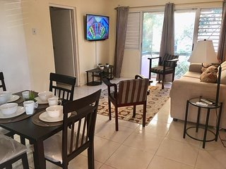 Newly Remodeled 1 Bedroom Apartment in New Kingston