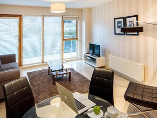 STYLISH 2BR-2BA APARTMENT IN SANDYFORD!!