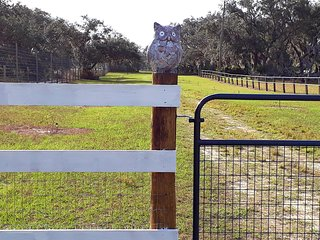 10 Acres Horse/Animal Farm